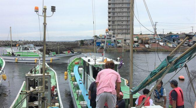 英治出版 海釣部、今年は東京湾でアジ釣りに。
